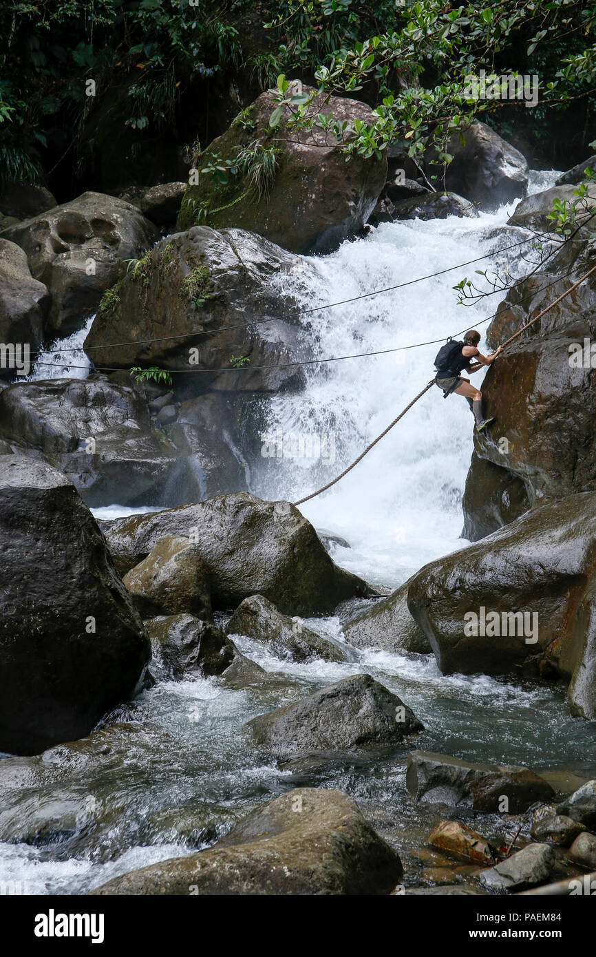 Kim Liszka, an emergency room nurse from Macungie, Pennsylvania, descends a rope to cross a river while competing on the Discovery Channel's survival competition series American Tarzan, which was filmed on the Caribbean island of Dominica. The former Army Reserve captain is one of four competitors left standing on the show. The finale airs Wednesday, July 27 at 10/9 C on the Discovery Channel. - Stock Image