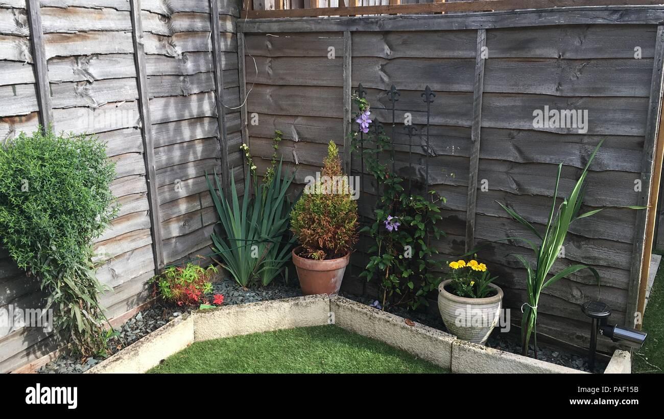 artificial grass garden stock photos  u0026 artificial grass garden stock images