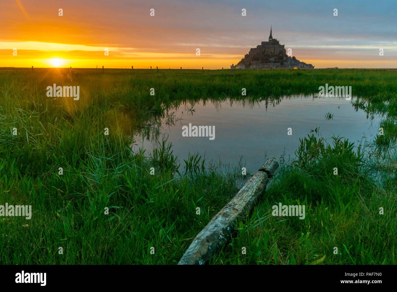 Mont st. Michel, Normandy, France. Dusk. A pond with a wooden pole in front of it, with the famous island and abbey in the background. Stock Photo