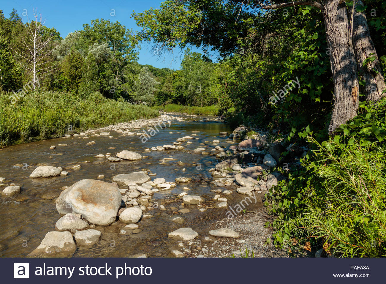 Little Rouge Creek in Rouge National Urban Park an urban wilderness inside Toronto Ontario Canada - Stock Image