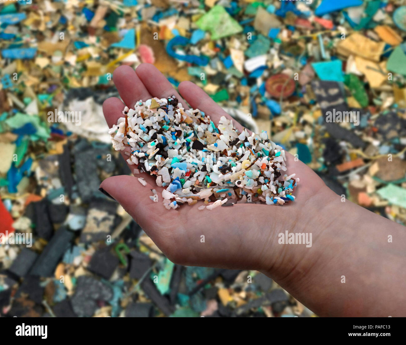 Woman's hand showing small pieces of plastic collected on a beach in Thailand. There are millions of tons of these plastic fragments scattered Stock Photo
