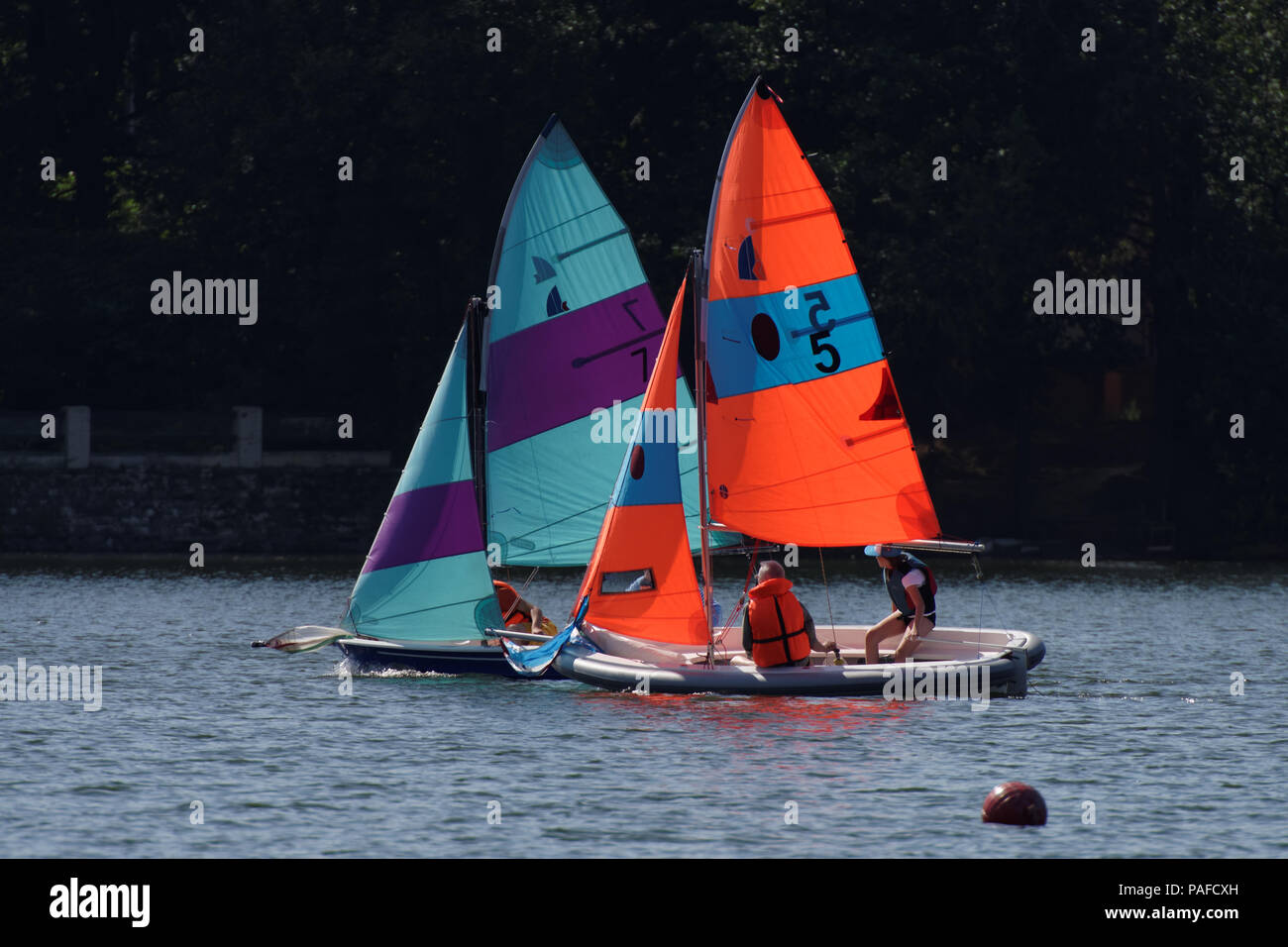 St. Petersburg, Russia - August 12, 2017: Amateur sailing competitions on Upper Suzdal lake. The competitions aimed to popularize the healthy lifestyl - Stock Image
