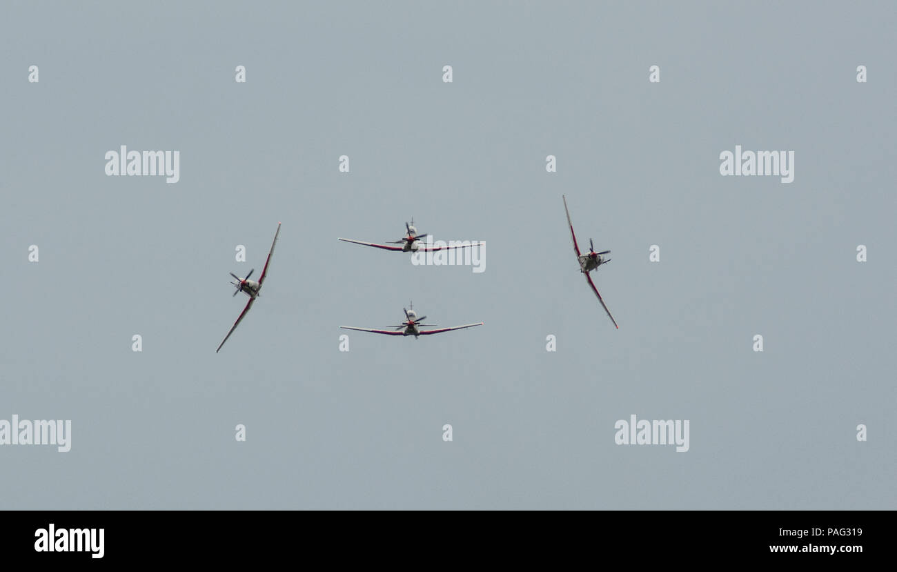 Wings of Storm / Krila Oluje - Stock Image