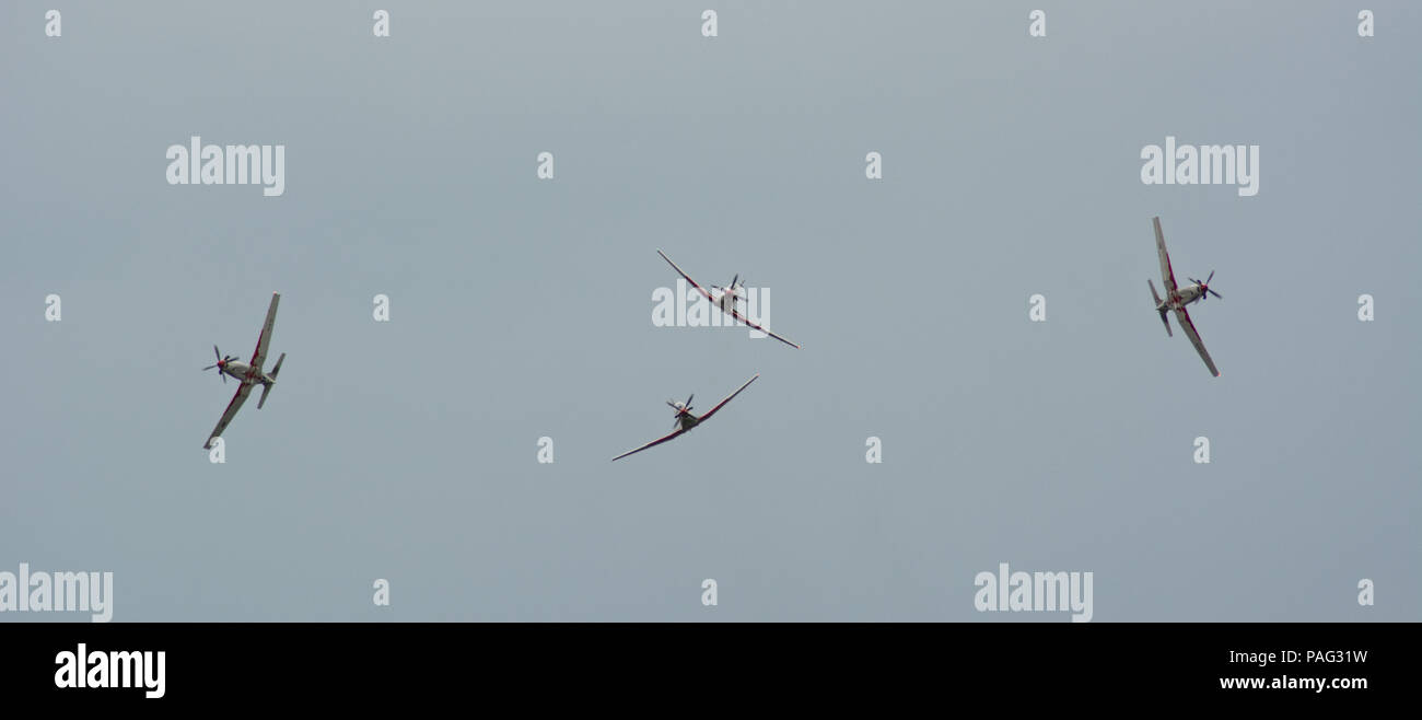 Wings of Storm / Krila Oluje Stock Photo