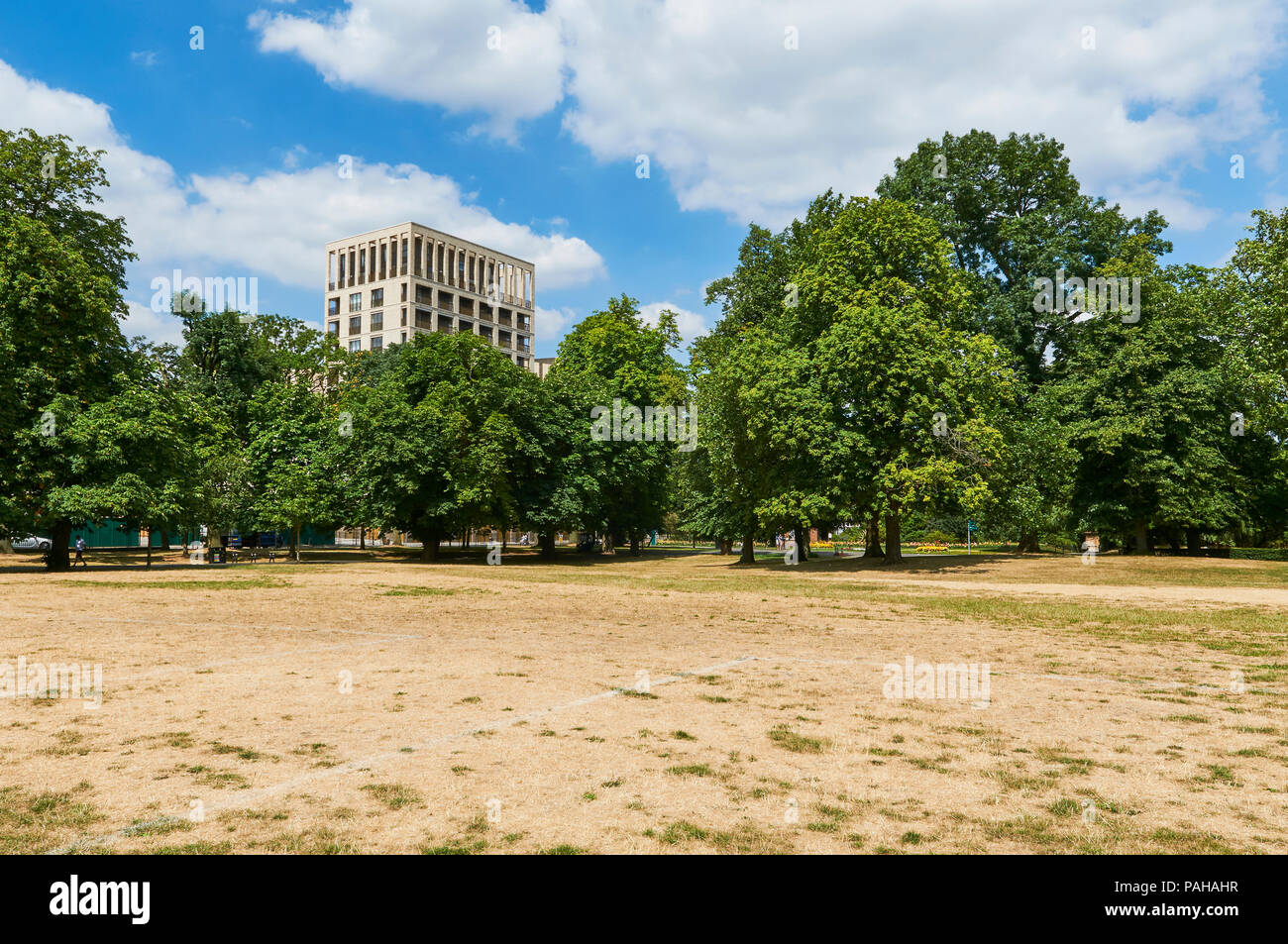 Dry arid conditions in Clissold Park, Stoke Newington, North London UK, during the July 2018 heatwave Stock Photo