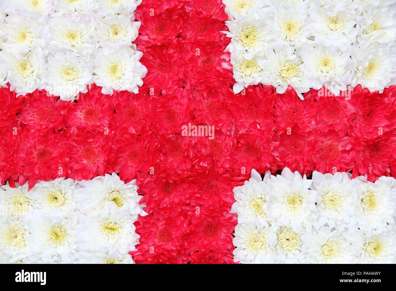 Flag Of England Made Of Red And White Flowers Stock Photo 213052727