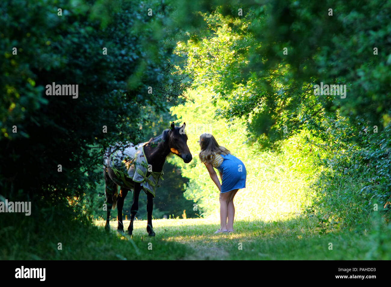 young girl talking to a small pony in the countryside. - Stock Image