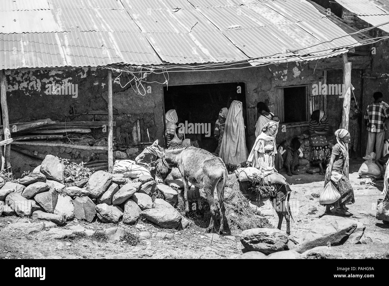 OMO, ETHIOPIA - SEPTEMBER 19, 2011: Unidentified Ethiopian people and donkeys in the street. People in Ethiopia suffer of poverty due to the unstable  Stock Photo