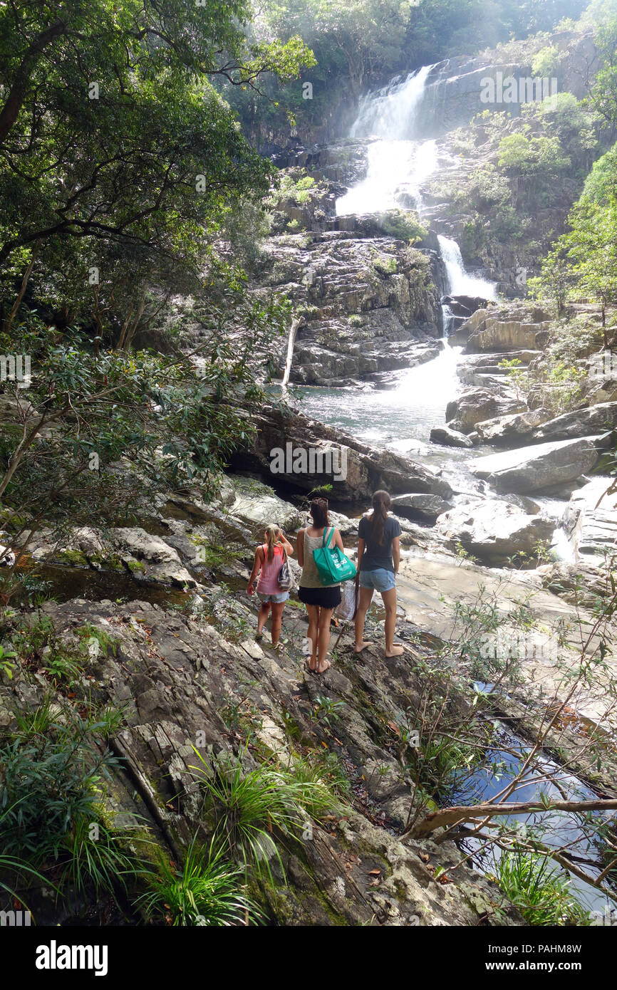 Adventurous young women arrive at Home Rule Falls, Cedar Bay National Park, Queensland, Australia. No MR - Stock Image