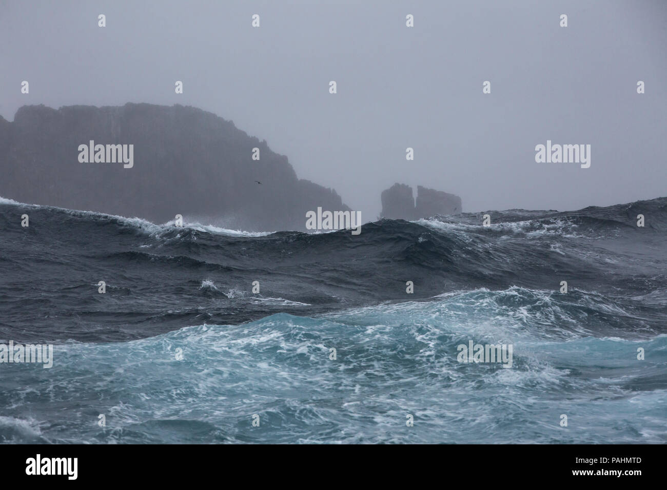 Storm at the Snares Islands, New Zealand - Stock Image