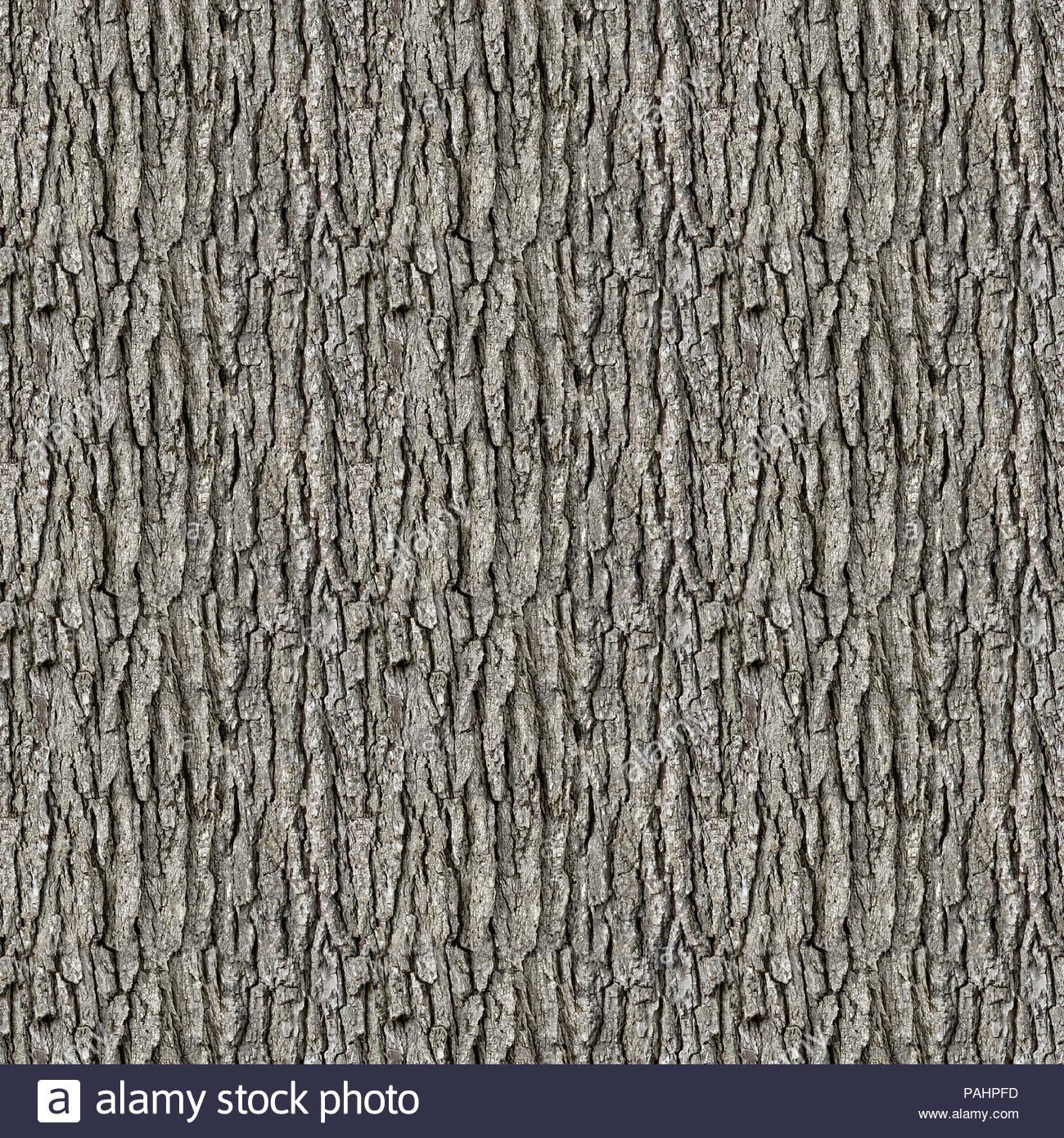 seamless tileable tree bark texture background stock photo