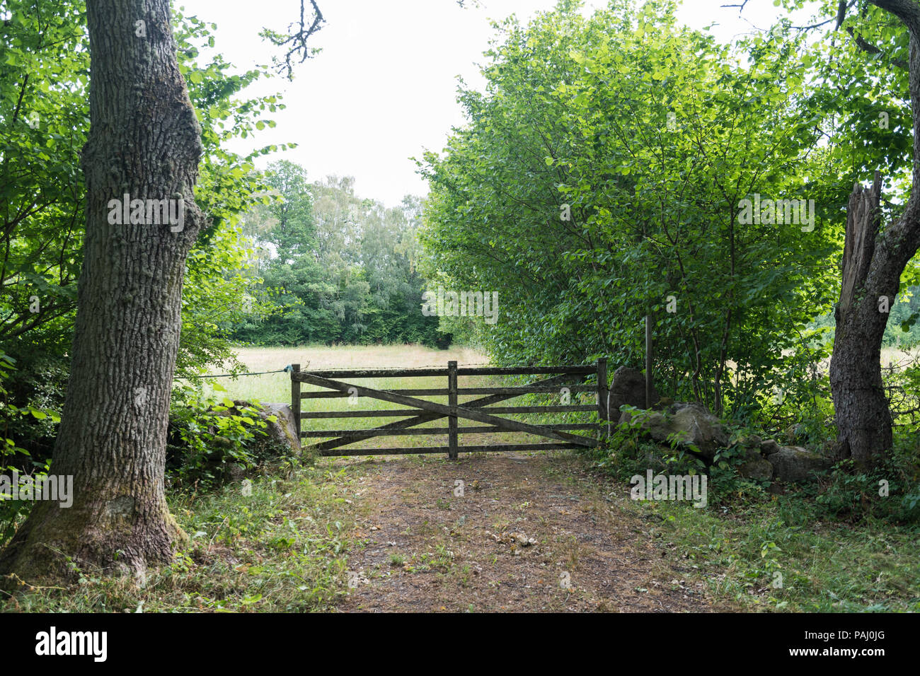 Traditional old wooden gate in a rural landscape at the swedish island Oland - Stock Image