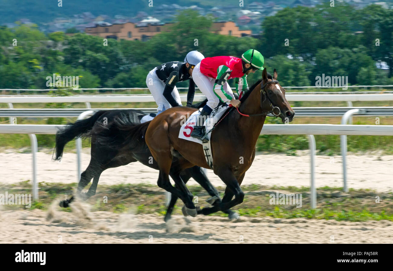 PYATIGORSK, RUSSIA - JULY 22, 2018:Horse racing for the prize in honor of the Feast of Thoroughbred Horse Breeding in Pyatigorsk. - Stock Image