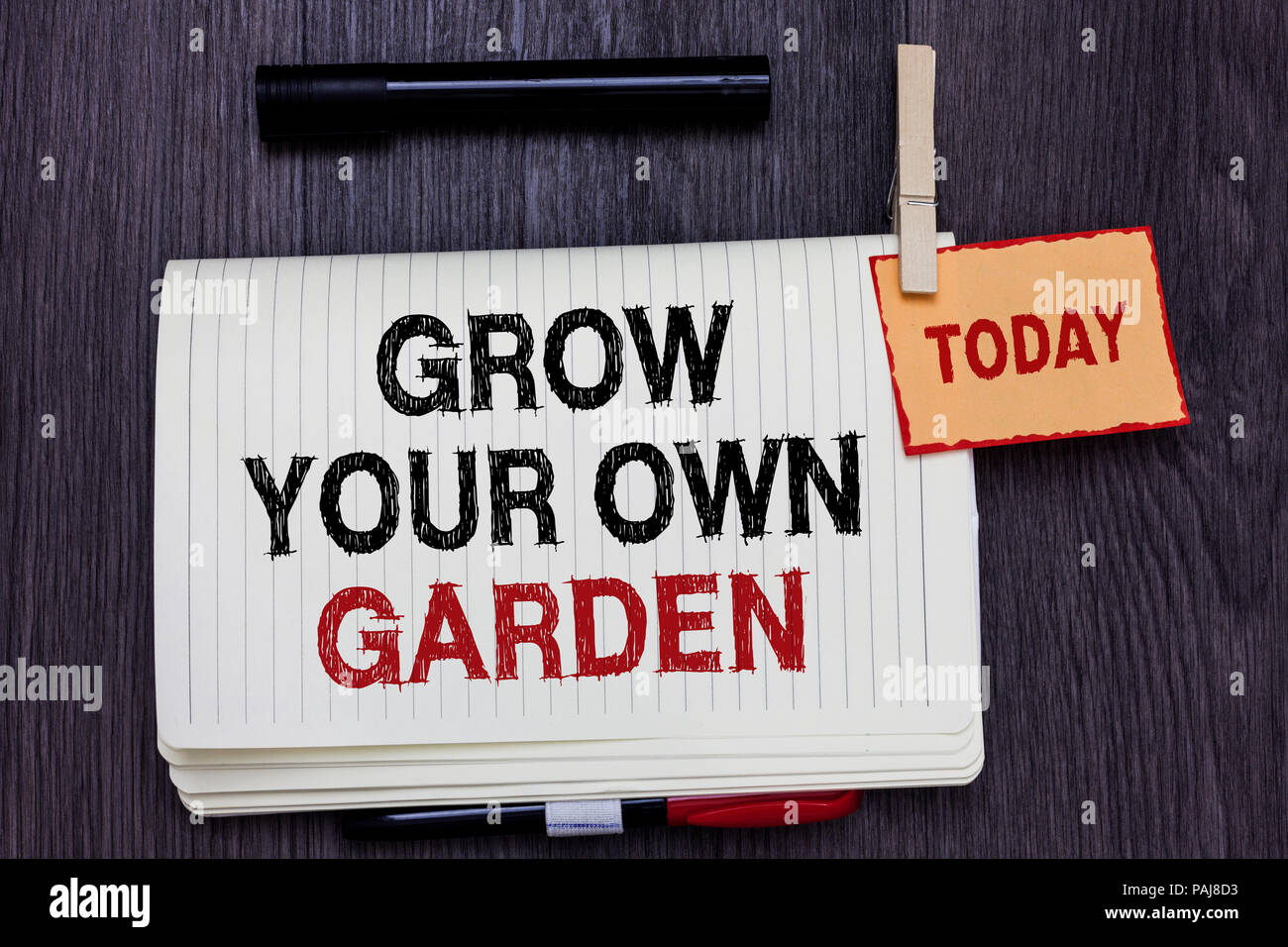 Handwriting Text Writing Grow Your Own Garden Concept Meaning