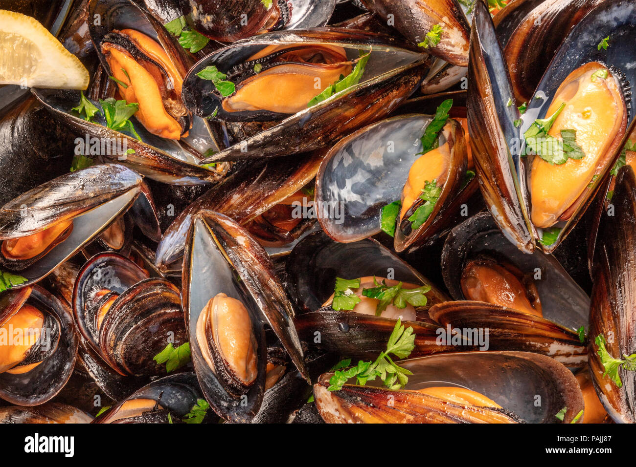 Closeup of cooked mussels, shot from above - Stock Image