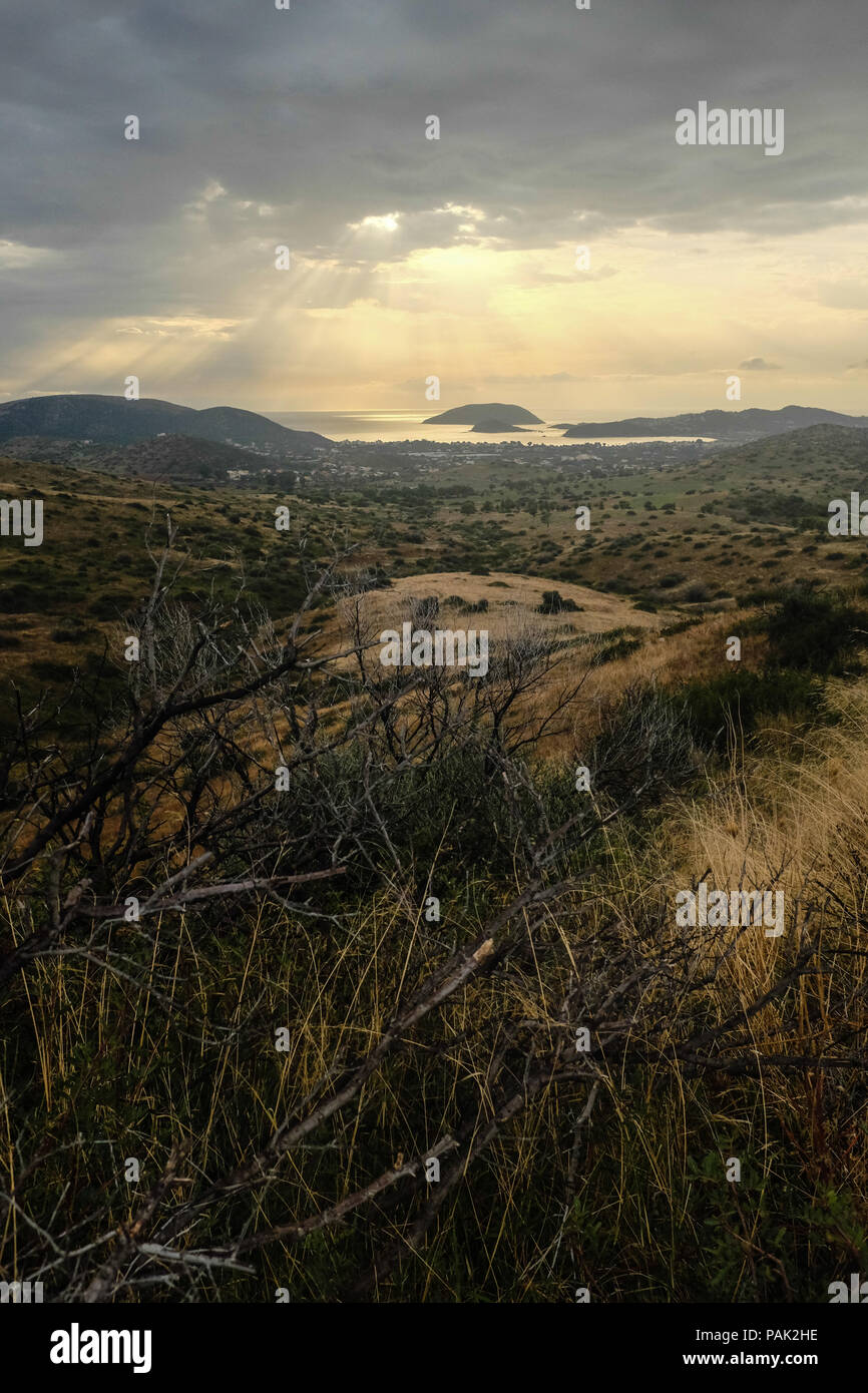 Mountainous landscape looking out towards Fokaia and Saronic Gulf, showing signs of regrowth and adaption from previous wildfire. East Attica, Greece. Stock Photo