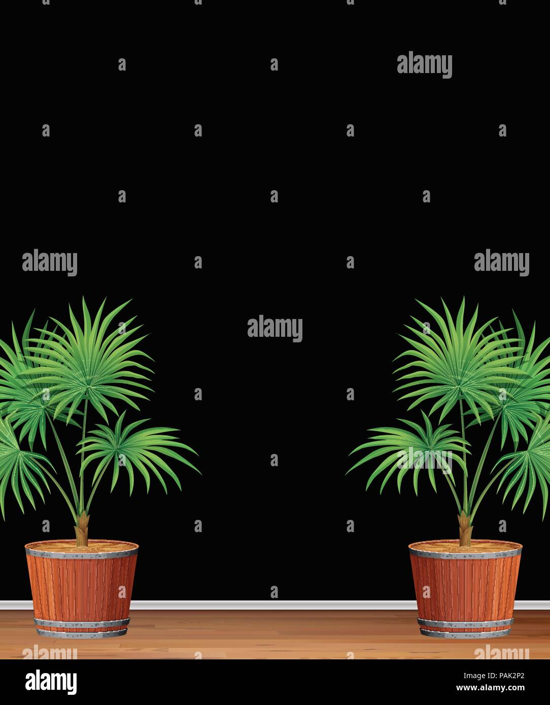 decorative indoor palm tree template illustration stock vector art