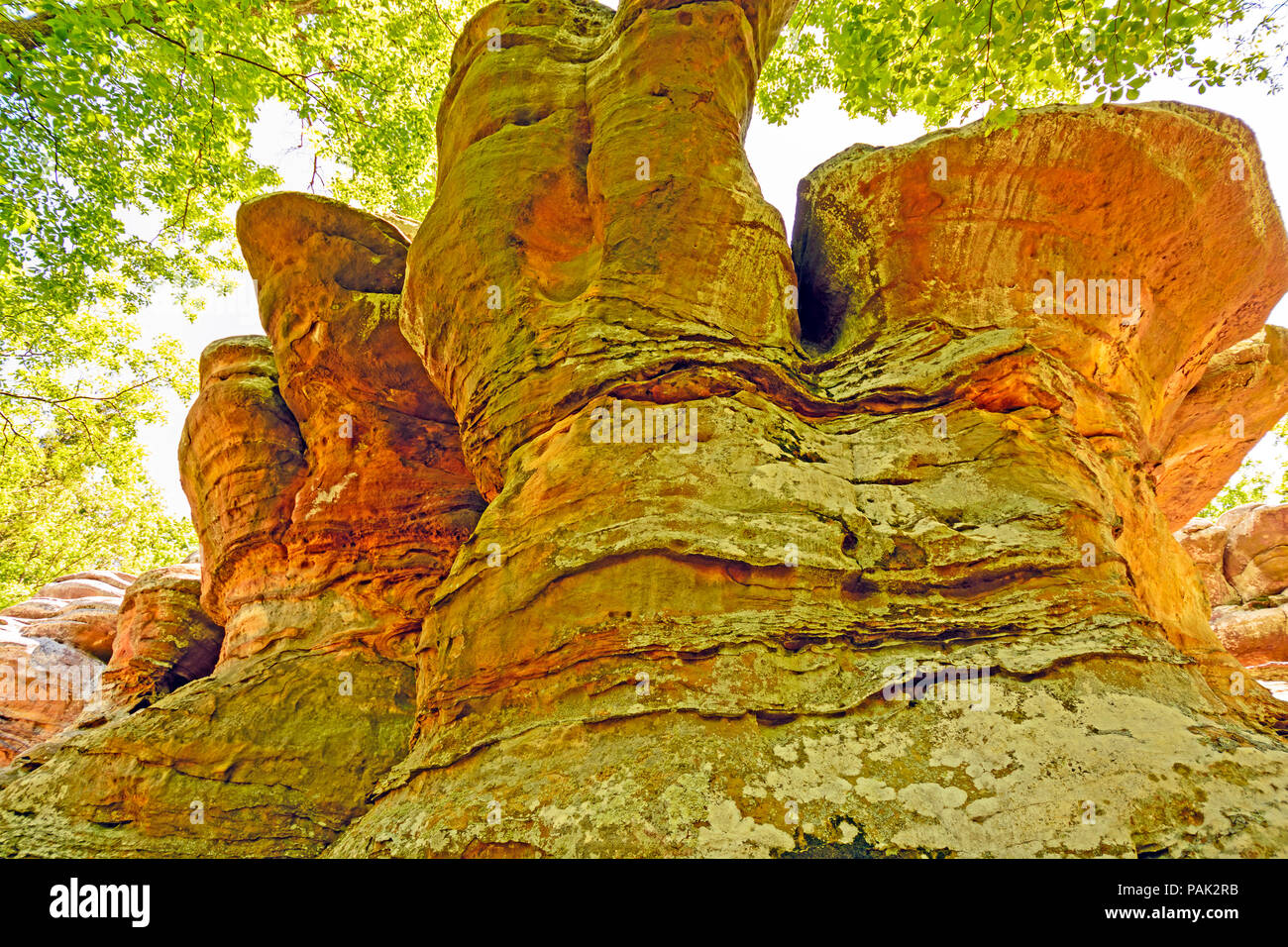 Sandstone formations in the Garden of the Gods in Shawnee National Forest - Stock Image