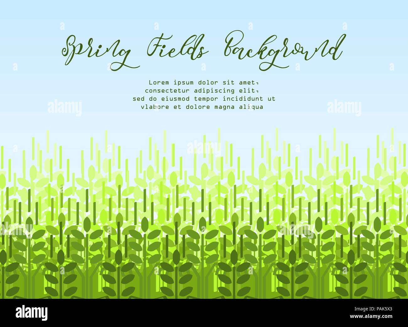Wheat grain background. Spring agro pattern - Stock Vector