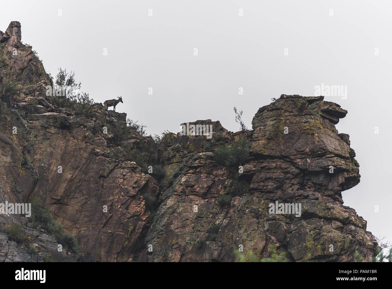 Colorado Mountains - Stock Image