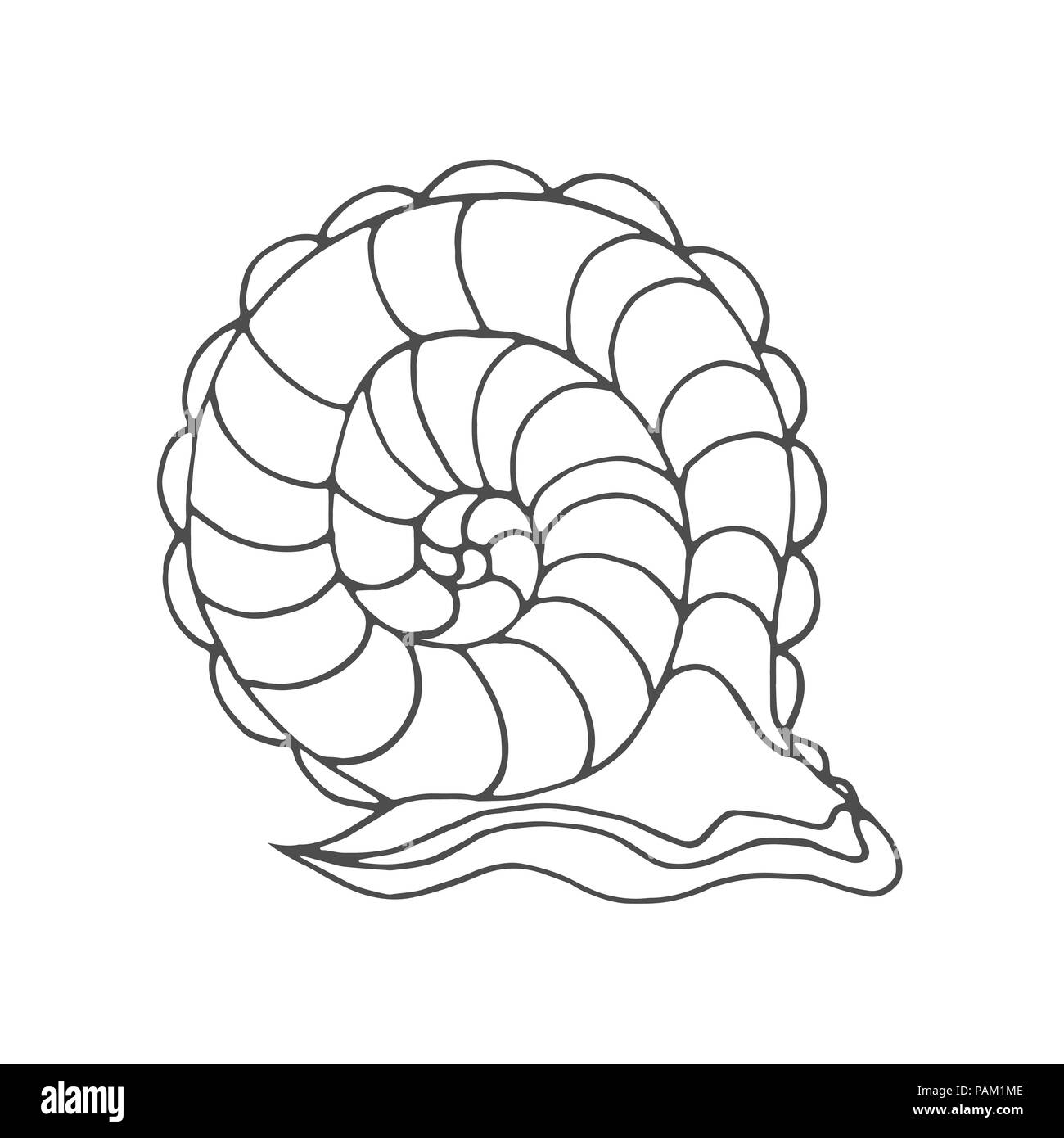 Snail coloring page for children and adults. Pattern isolated ...