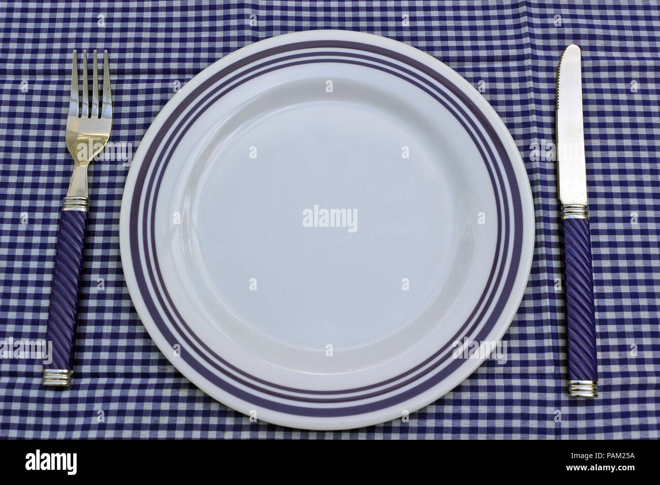 White And Blue Plate With Cutlery On A Blue Gingham Tablecloth. Picnic Or  Table Setting.
