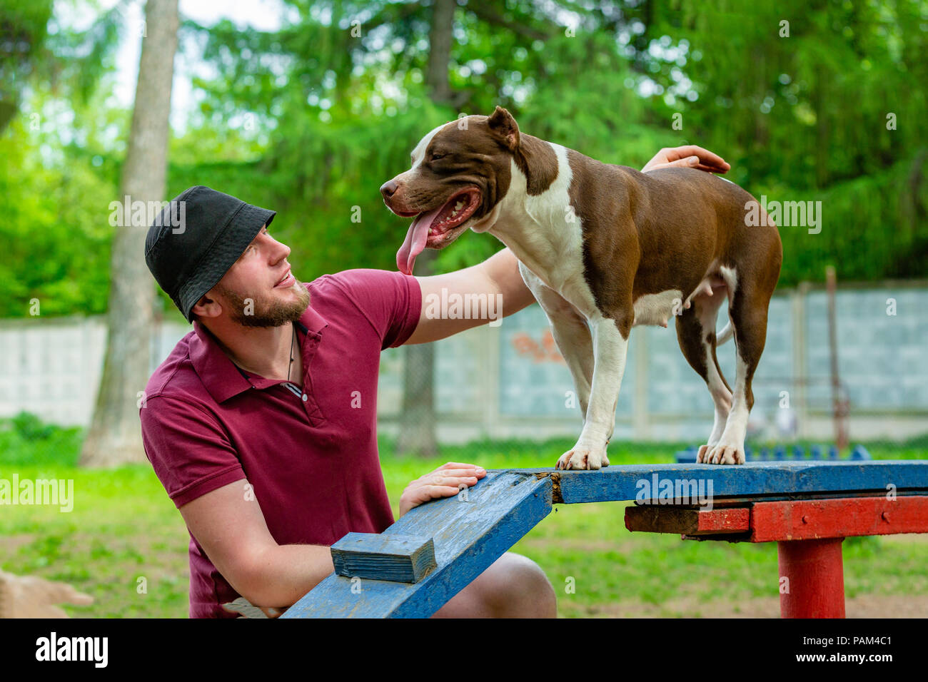 Master and his obedient dog at a dog training center - Stock Image
