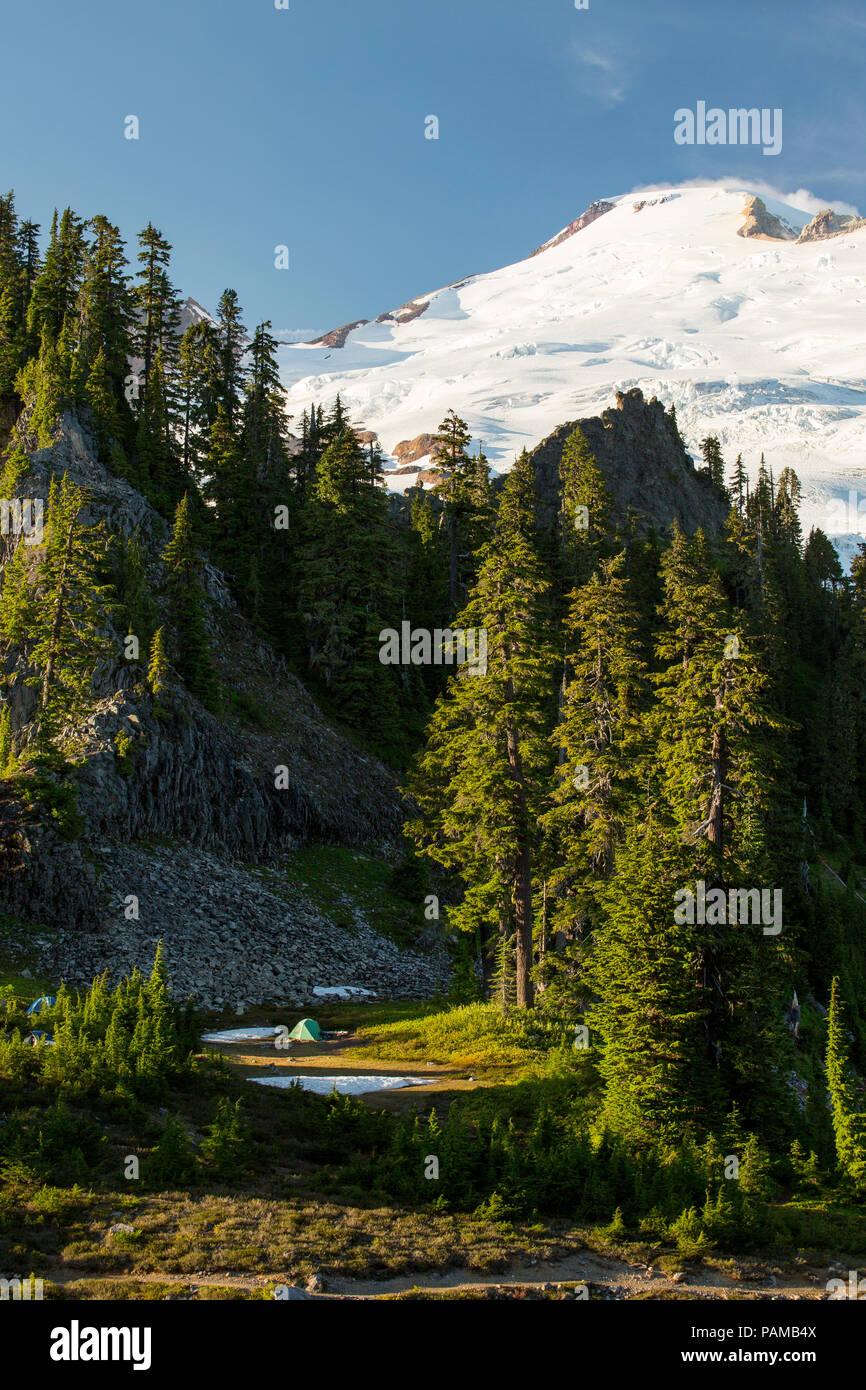 Mount Baker from Park Butte in Mount Baker National Recreation Area. - Stock Image