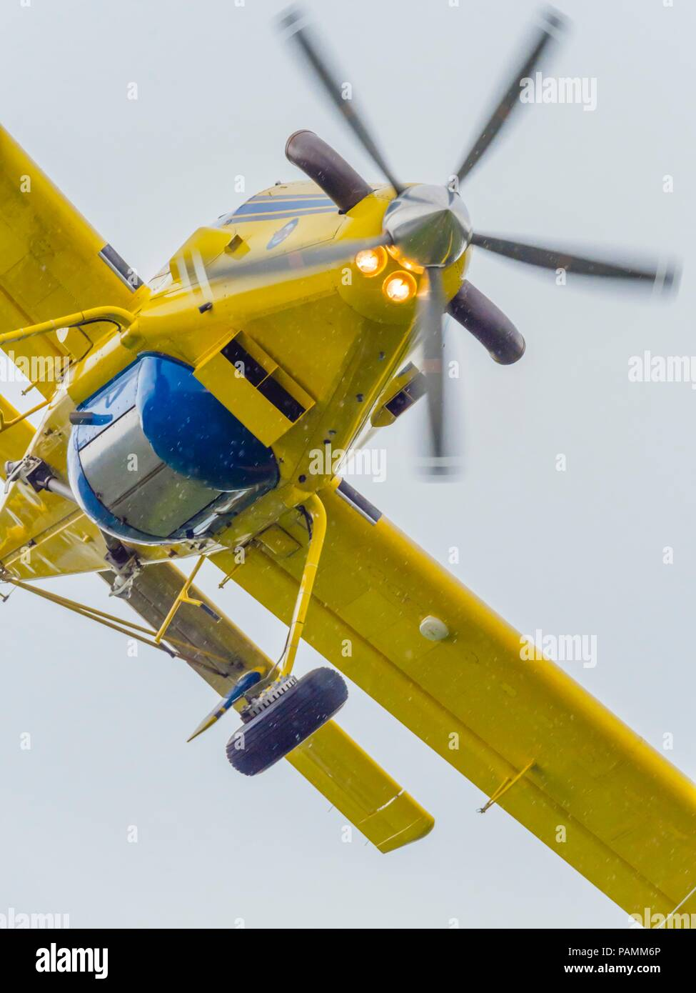 Croatian Yellow water bomber Stock Photo