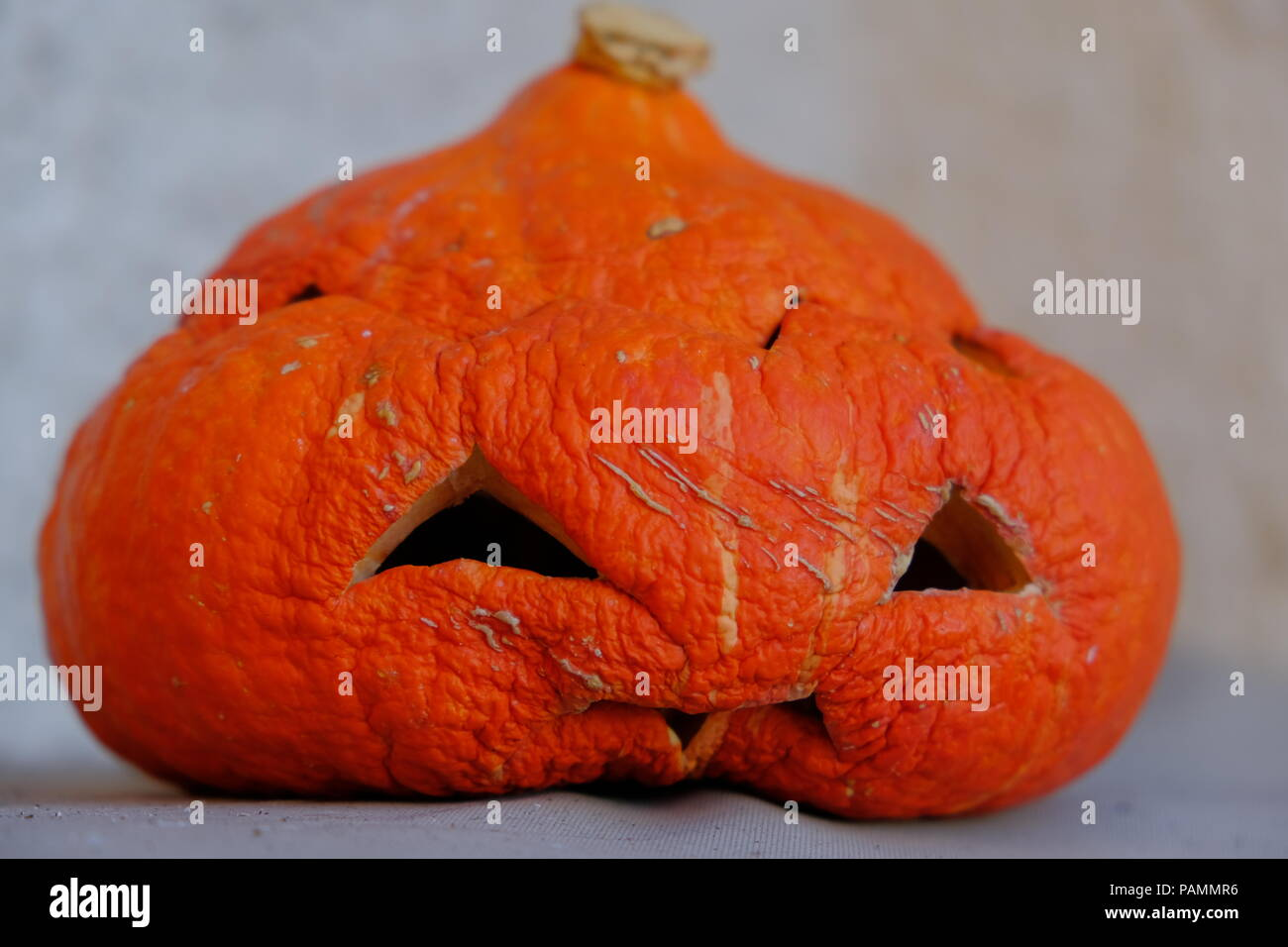 Hellowenn is over! Hollow old and sad Pumpkin Head Stock Photo