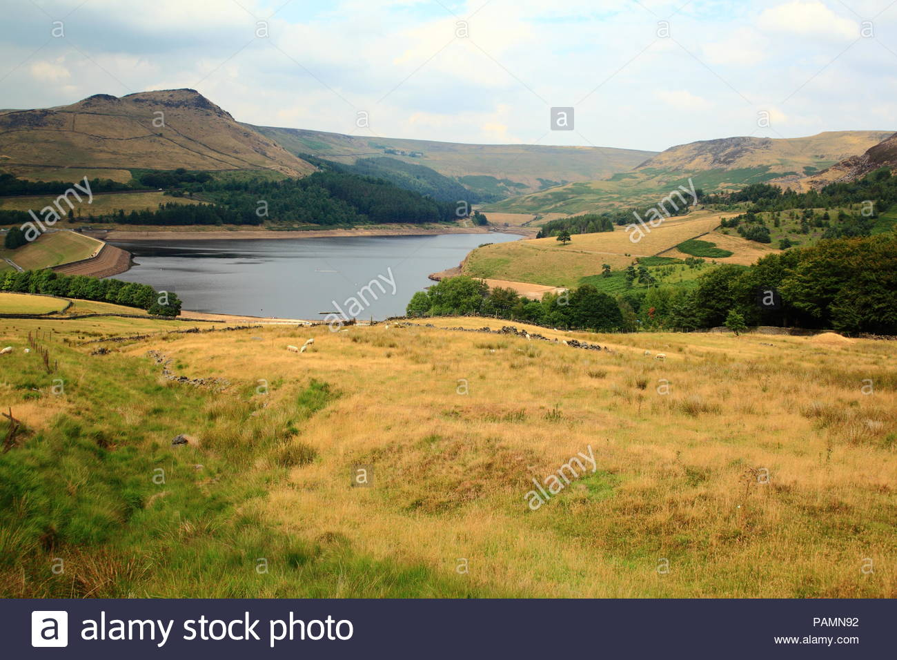 Landscape views of Dove Stone Reservoir during late afternoon summer July 2018. Greenfield, Oldham, Saddleworth, UK - Stock Image