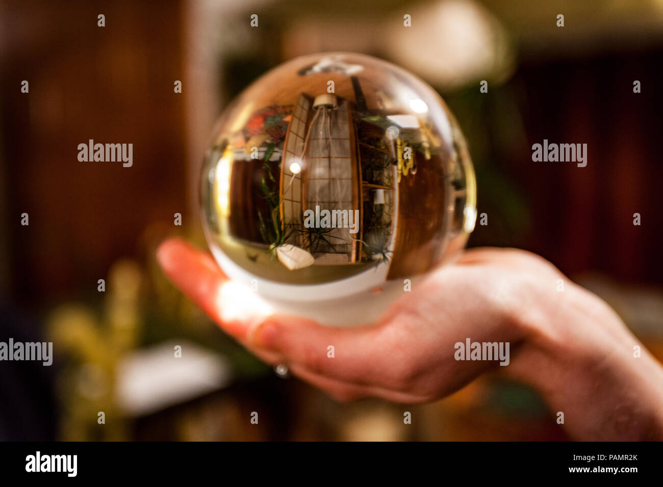 Hand holding a crystal ball in which appears the upside-down reflection of a living room full of plants - Stock Image