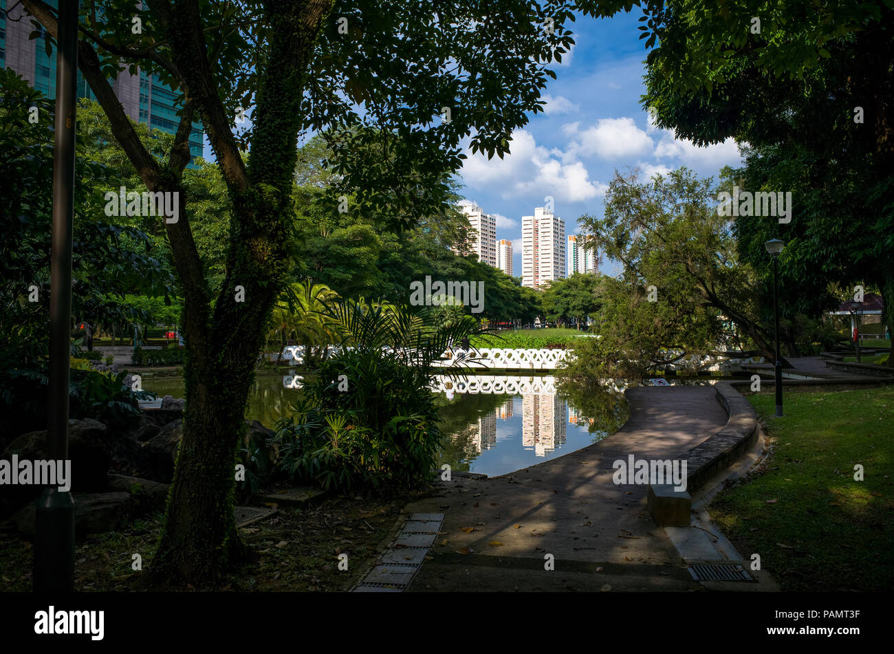 Forest walkway along the water with bridge and cityscape - Toa Payoh Park, Singapore - Stock Image