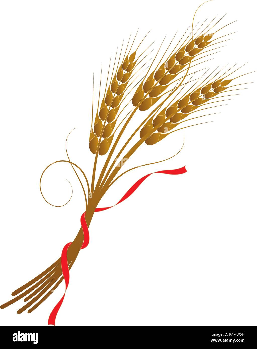 Vector illustration of wheat tied with a ribbon - Stock Vector