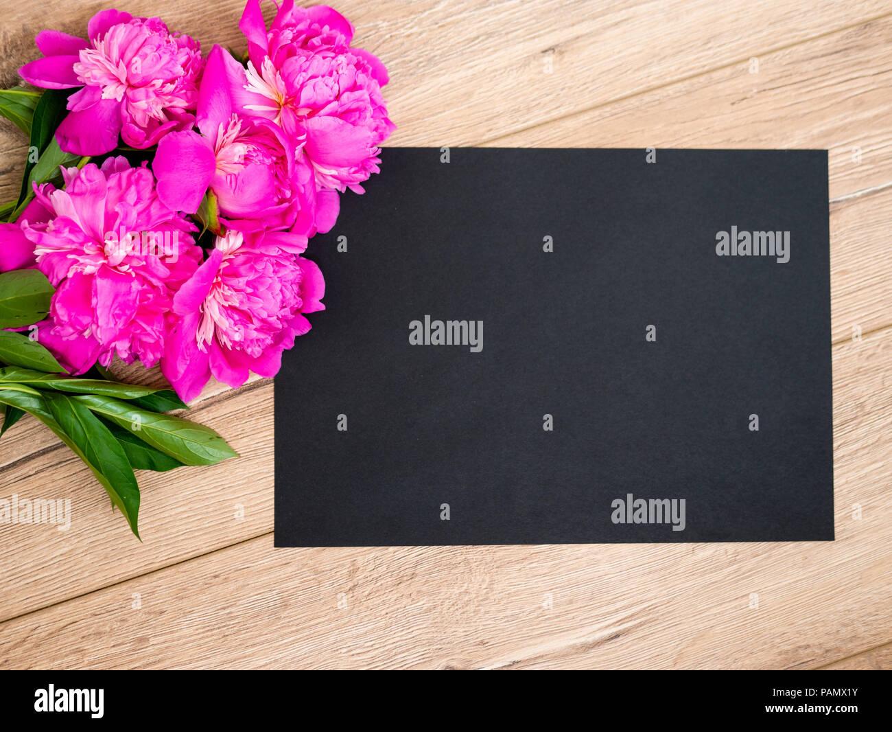 Magenta Paper Flower Black Background Stock Photos Magenta Paper
