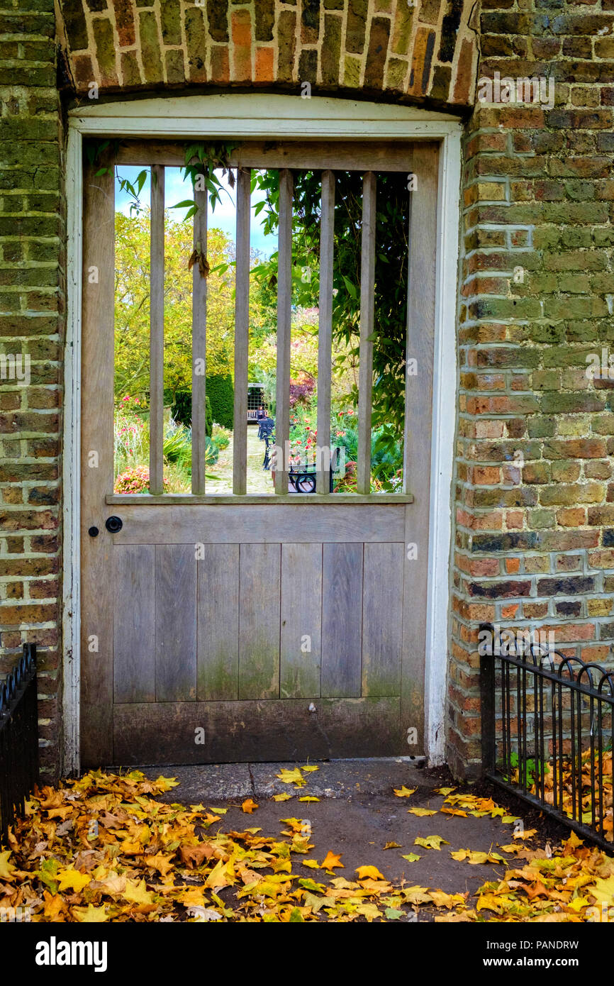 Wooden door with slots looking into walled garden in Brockwell Park, Herne Hill South London, UK. Yellow fallen autumn leaves on ground. Portrait. - Stock Image