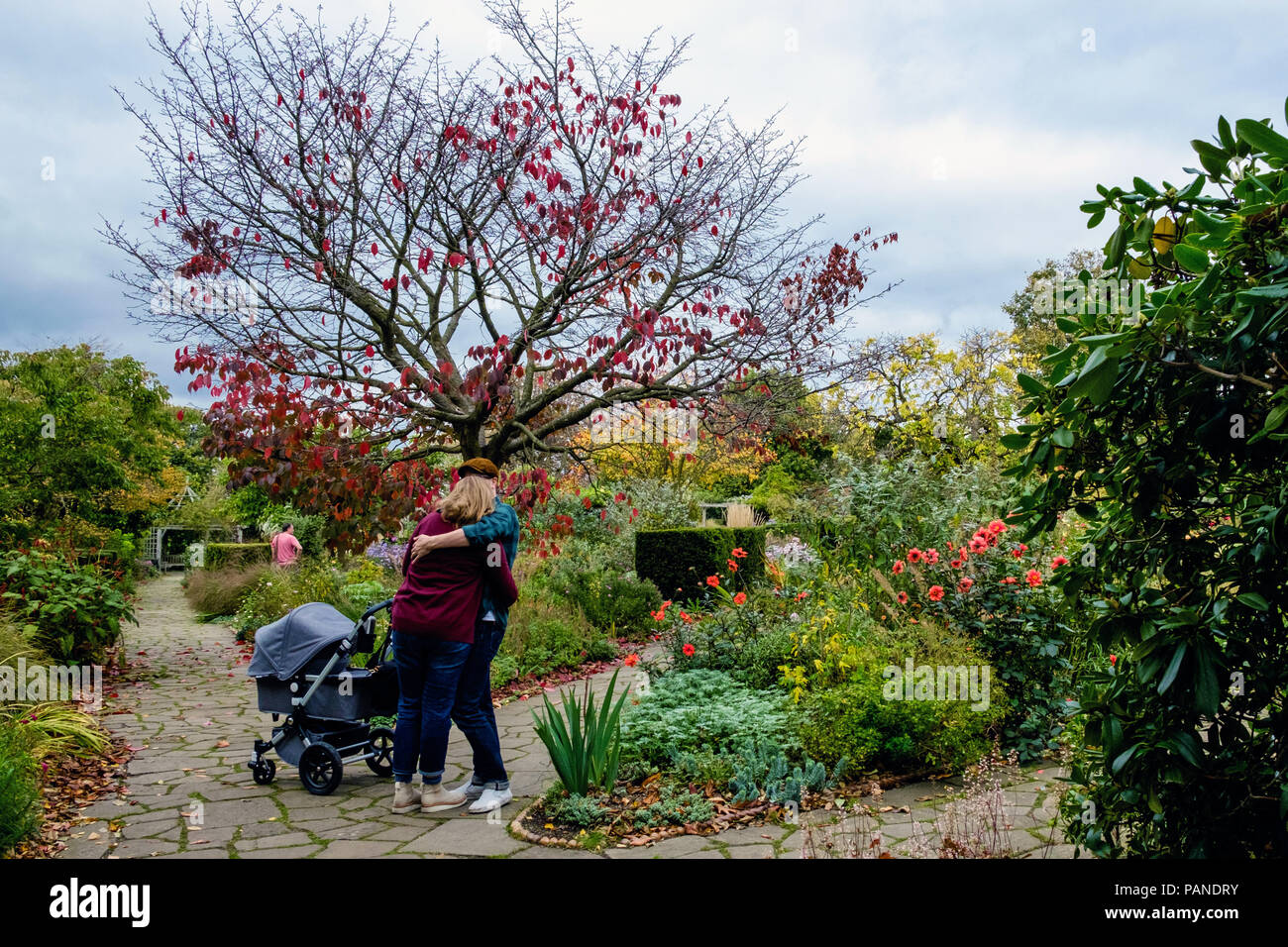Young couple hug and kiss next to a baby buggy in Walled Garden, during Autumn in Brockwell Park, Herne Hill, South London, Uk - Stock Image