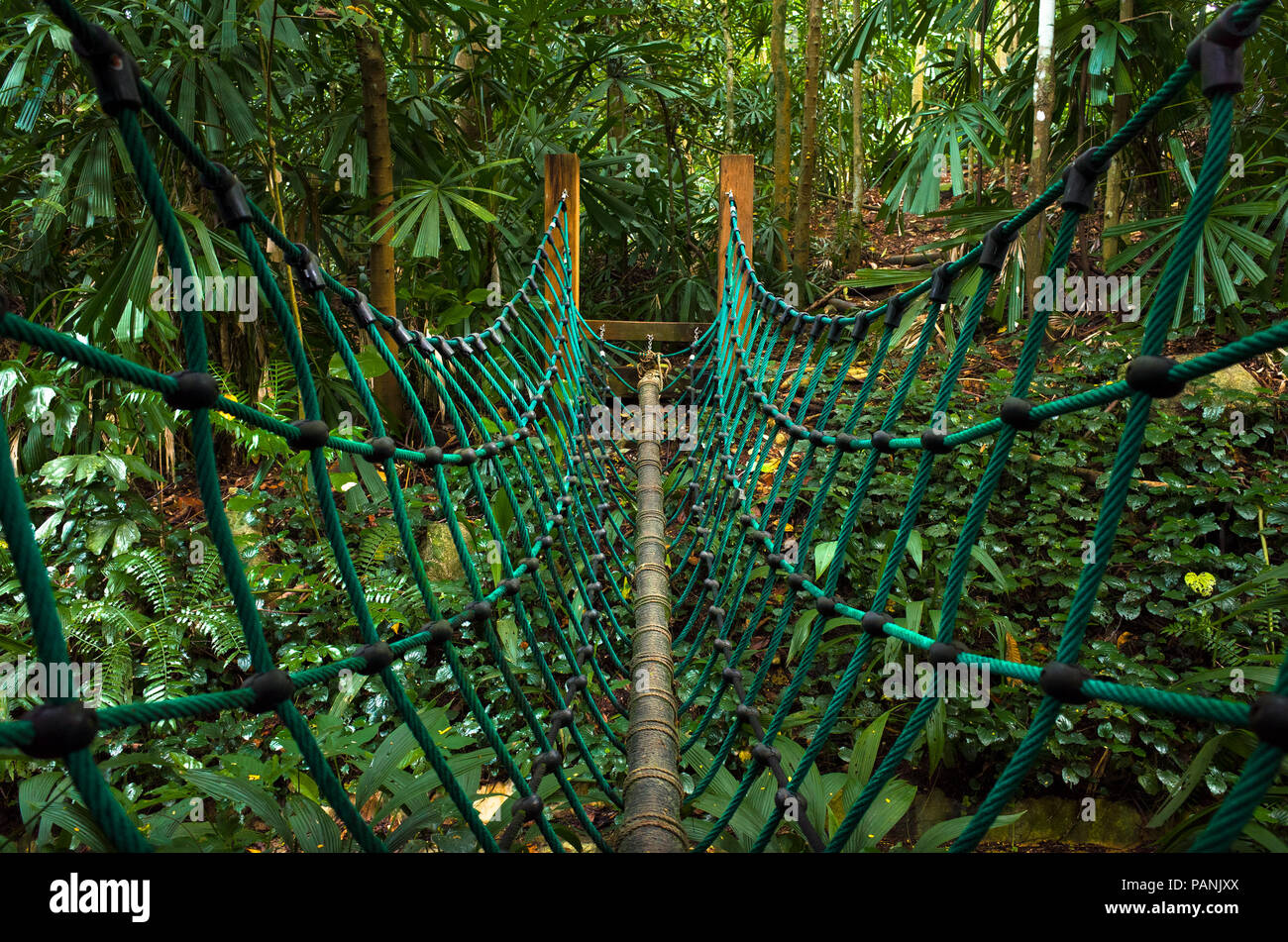 Turqouise rope bridge hanging over a small canyon in Hindhede Nature Park, Singapore Stock Photo