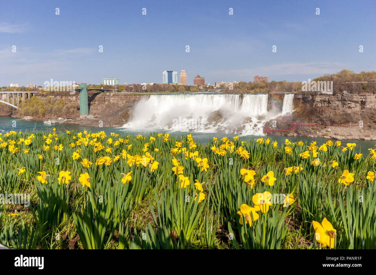 View At Niagara Falls And Flowers From Canadian Side In Spring