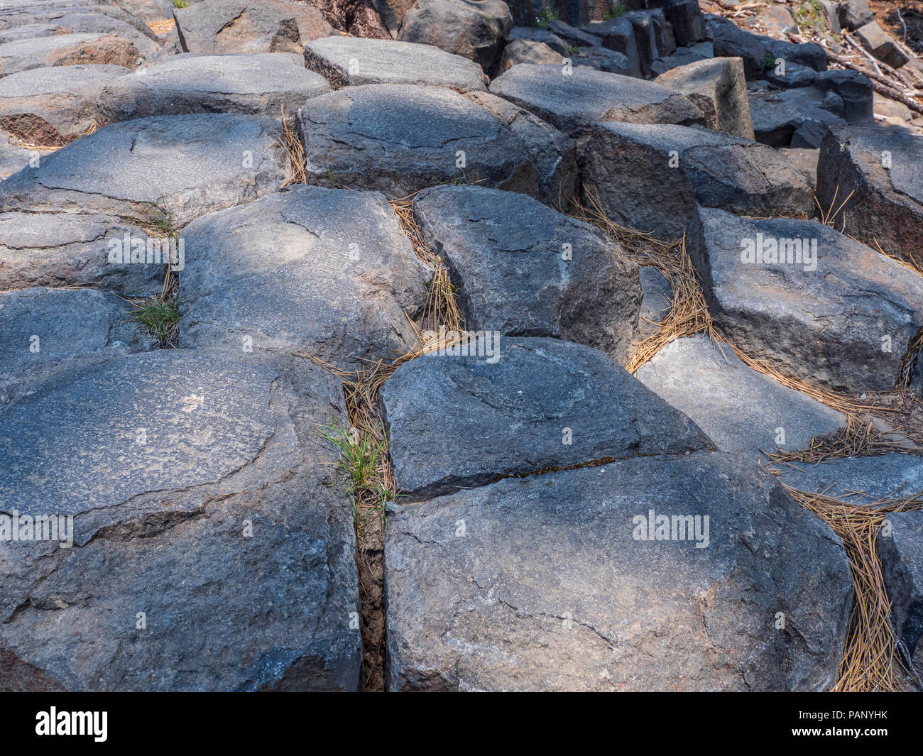 Top of the columns, Devil's Postpile National Monument near Mammoth Lakes, California. - Stock Image