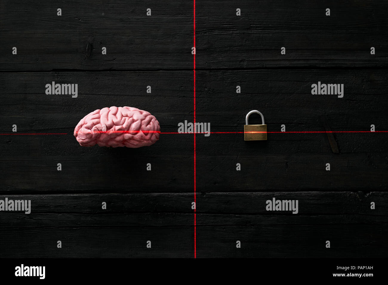 Artificial intelligence, encrypted brain - Stock Image