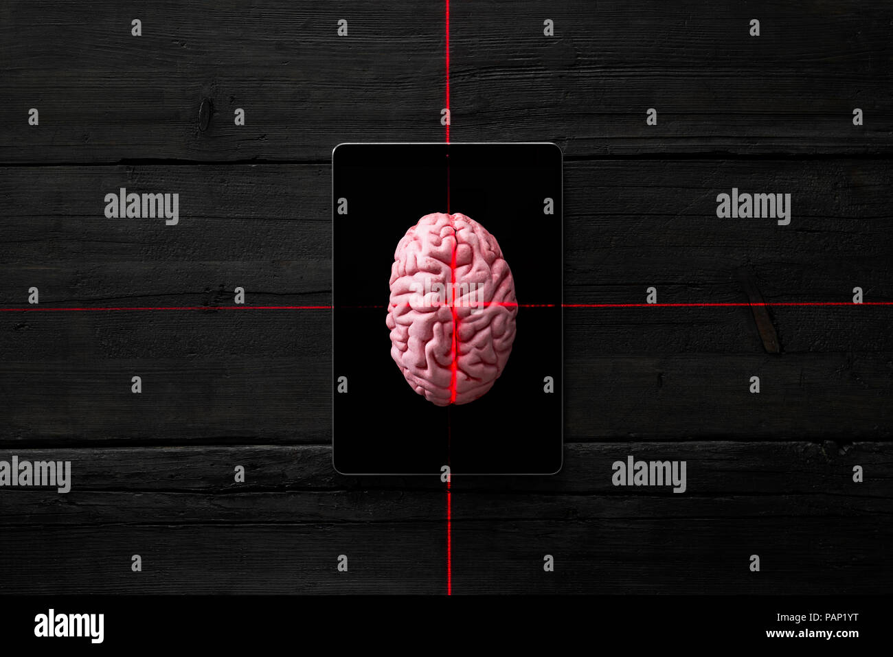 Artificial intelligence, brain on digital tablet getting measured - Stock Image