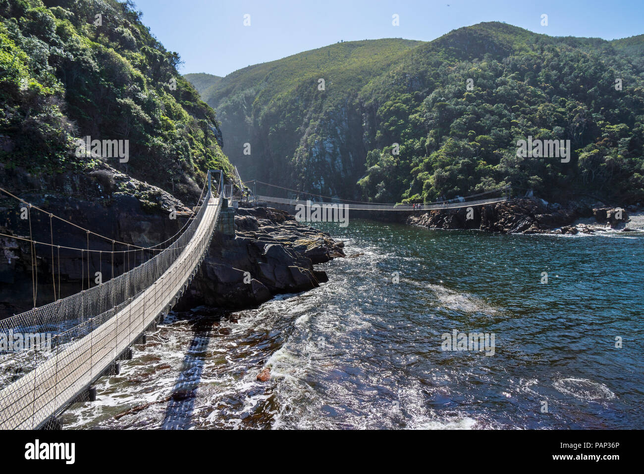 Africa, South Africa, East Cape, Tsitsikamma National Park, Storms River Mouth, suspension bridge - Stock Image