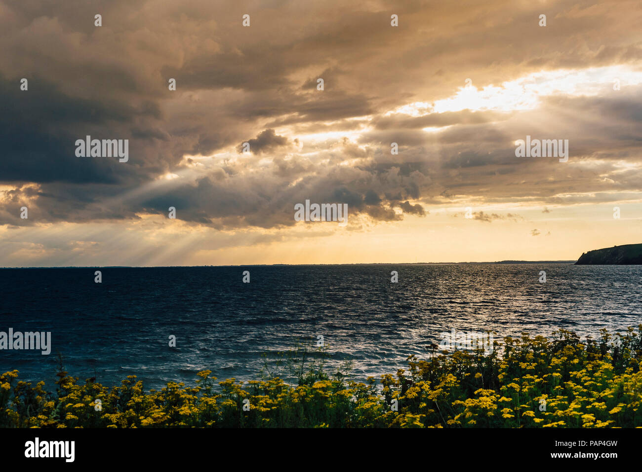 Germany, Ruegen, coast and Baltic sea under cloudy sky - Stock Image