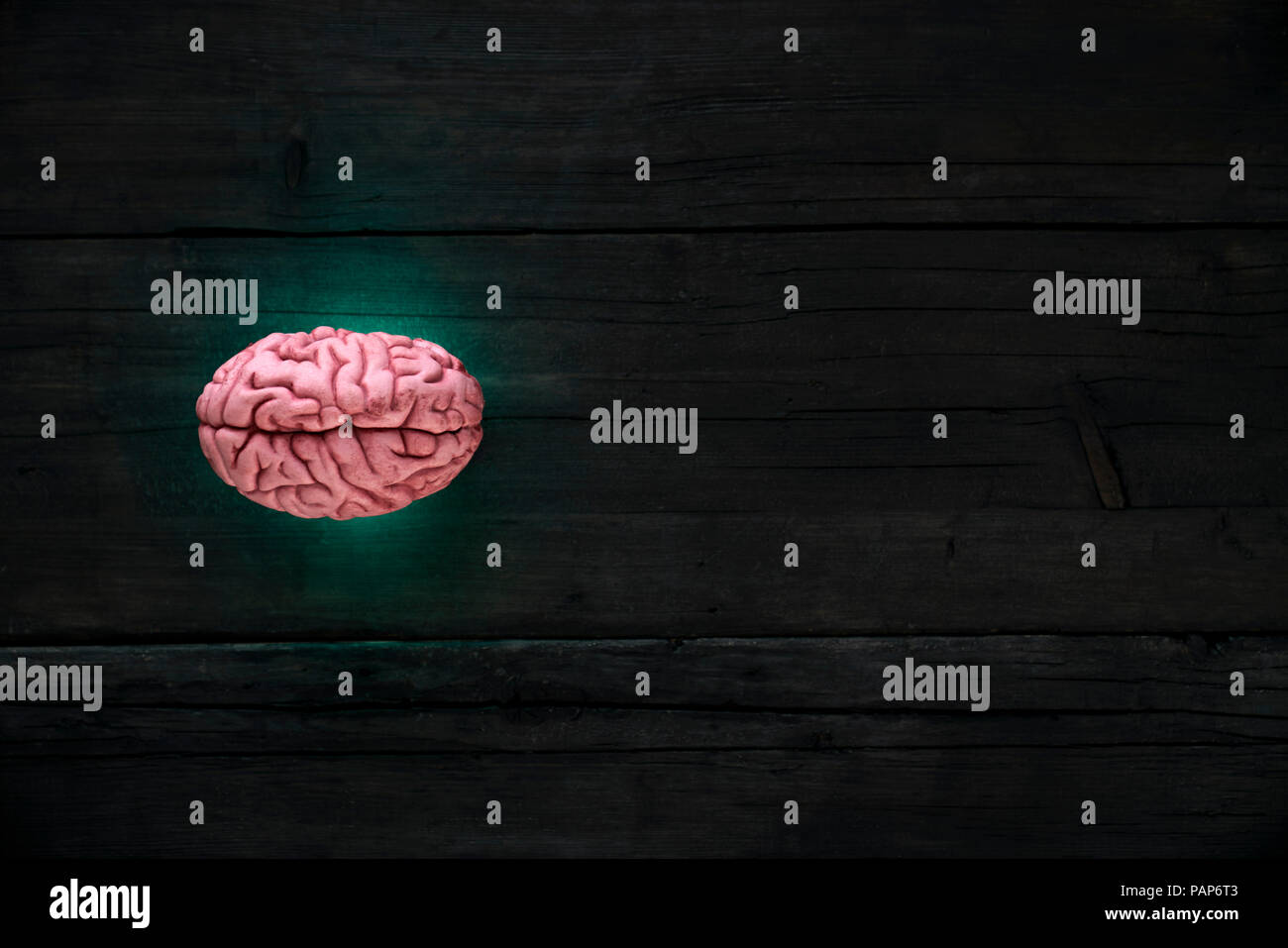 Artificial intelligence, brain gleaming - Stock Image