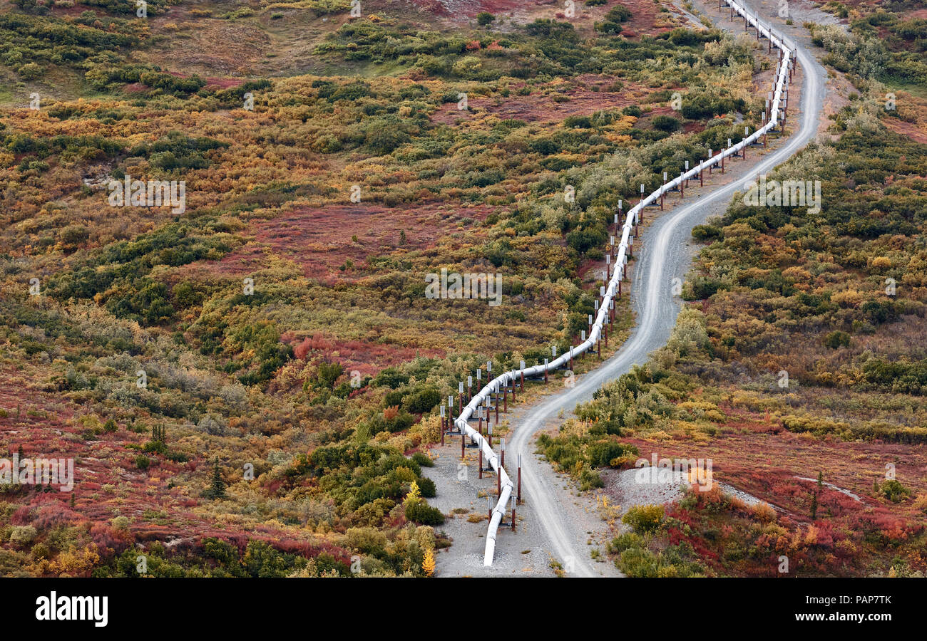 USA, Alaska, Oil Pipeline - Stock Image