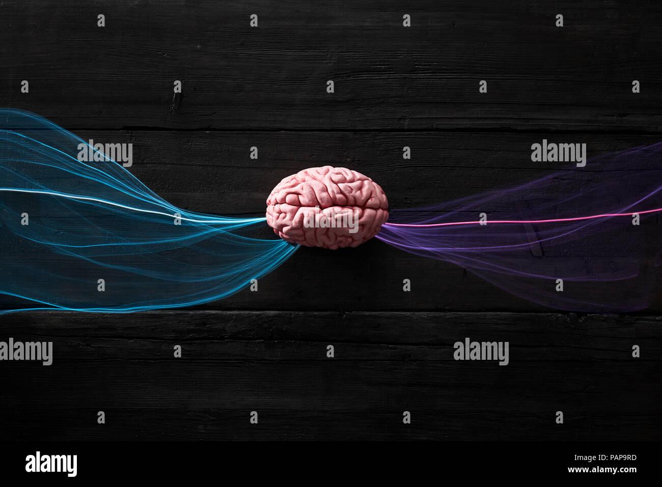 Brain and light waves symbolizing data flow - Stock Image