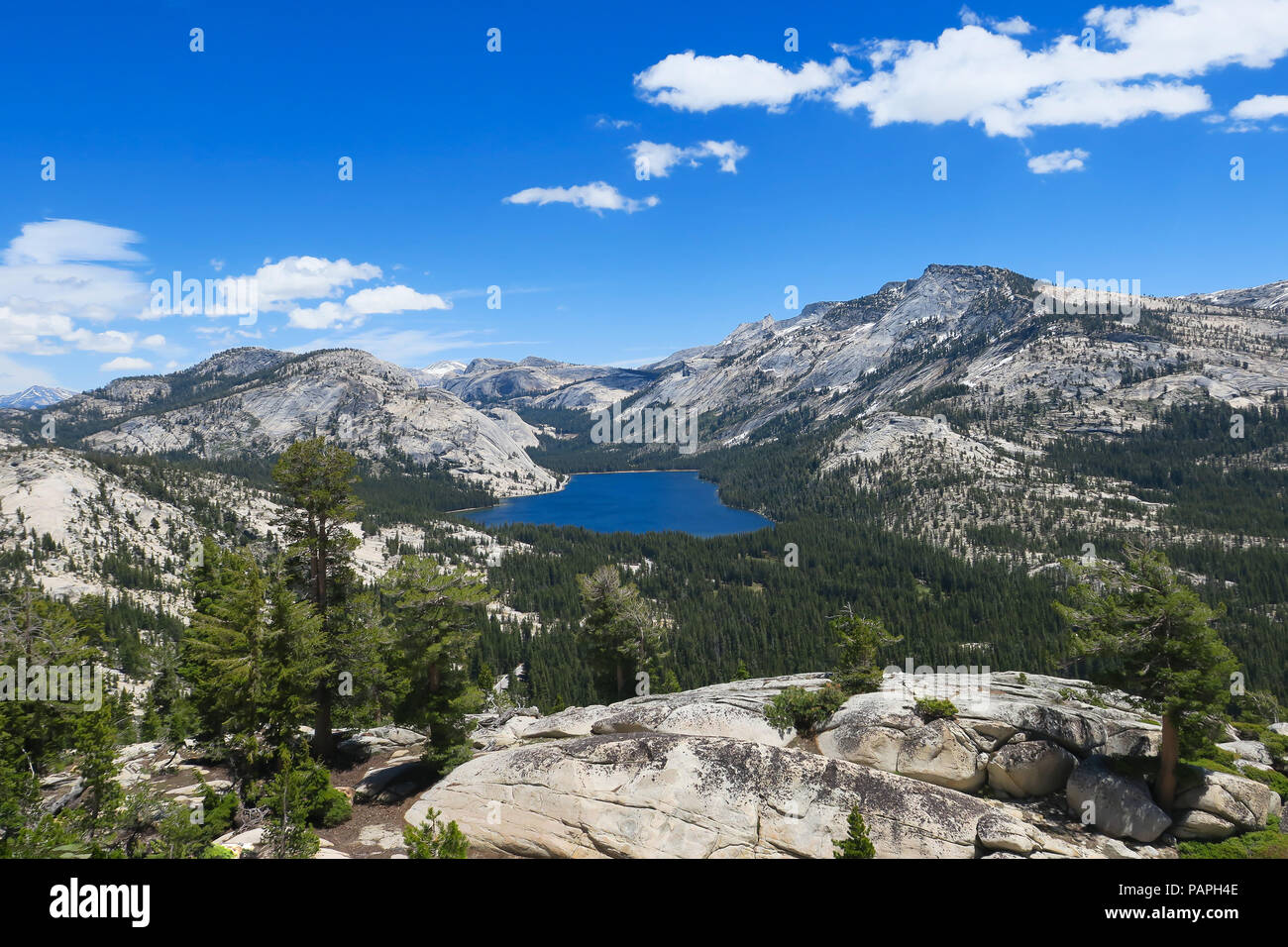 Tenaya Lake and Alpine Landscape, from above at Olmsted Point - Yosemite National Park Stock Photo