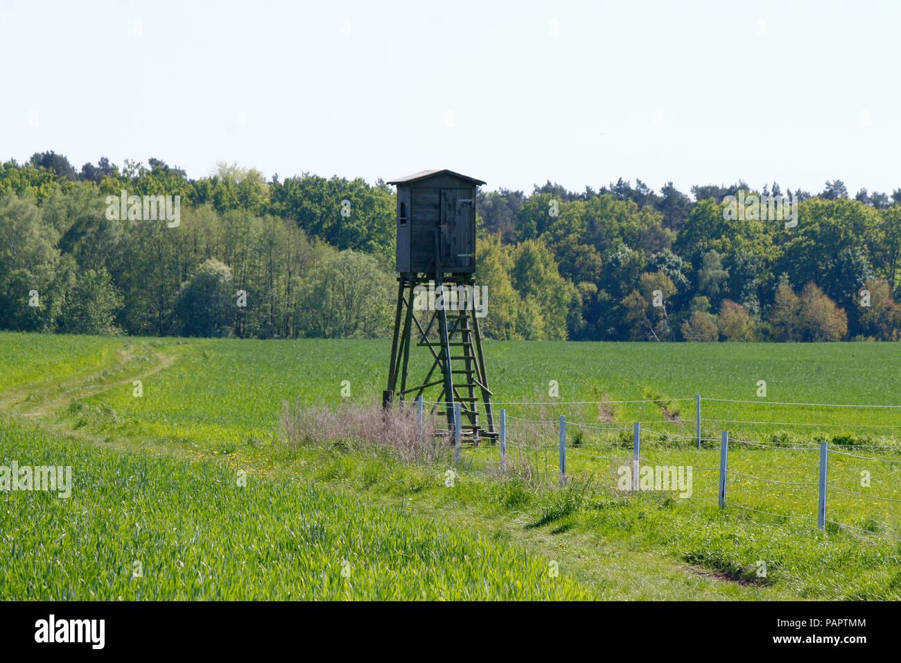 Hochstand, Muehlenbecker Land, Brandenburg. - Stock Image