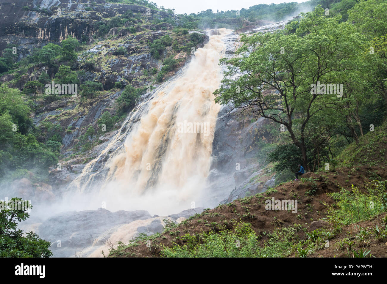 A massive but beautiful picturesque waterfall deep in a rainforest causing mist and wetting everything around it constantly. - Stock Image